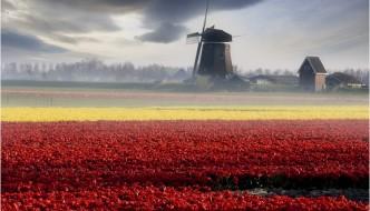Holland__by_adamsalwanowicz