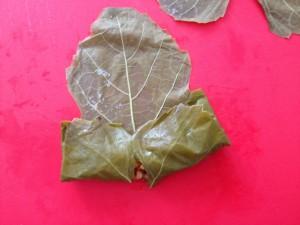 sarma-wijbladeren