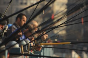 vissen-istanbul-halic